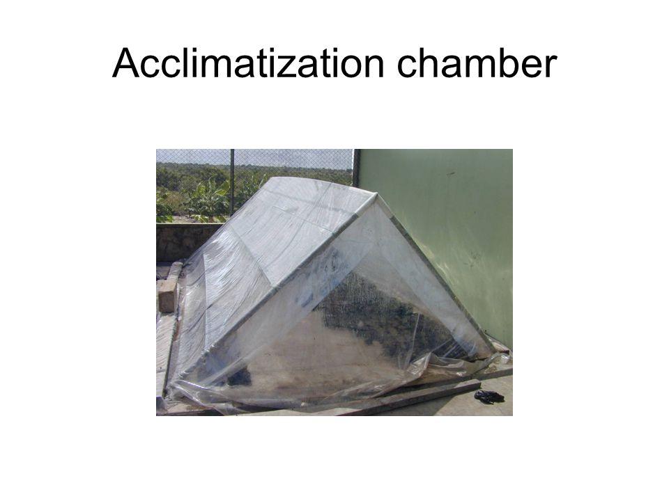 Acclimatization chamber