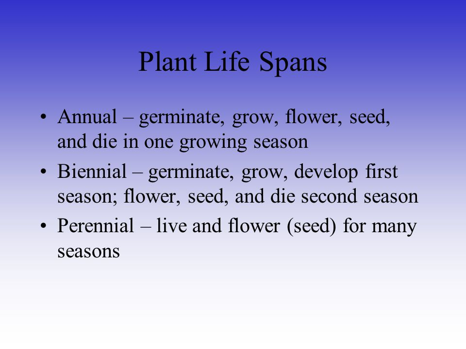 Plant Life Spans Annual – germinate, grow, flower, seed, and die in one growing season.