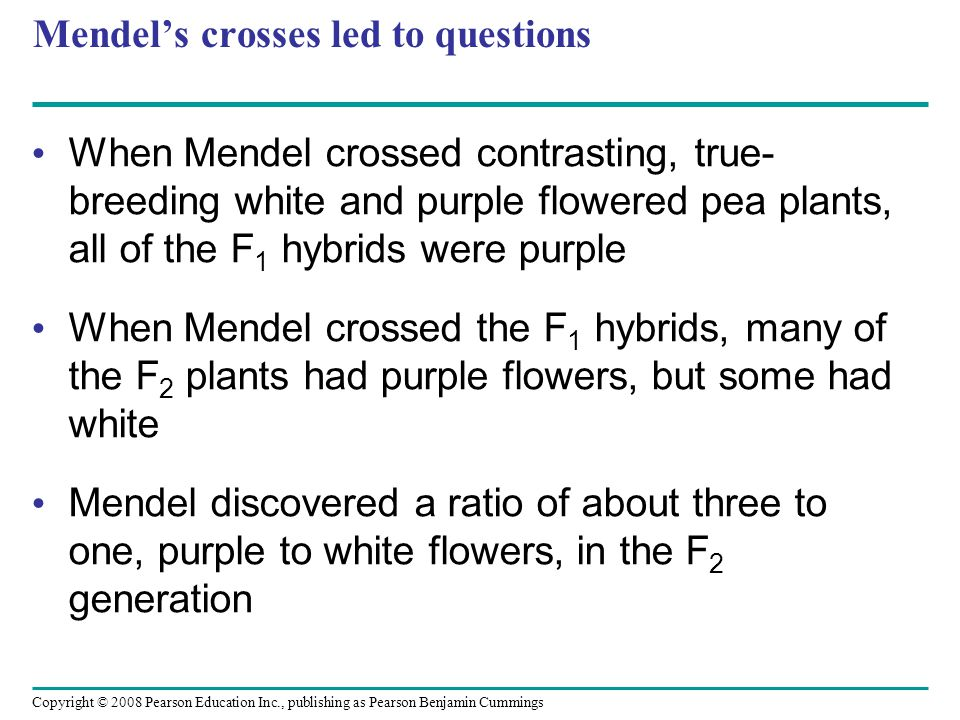 Mendel's crosses led to questions