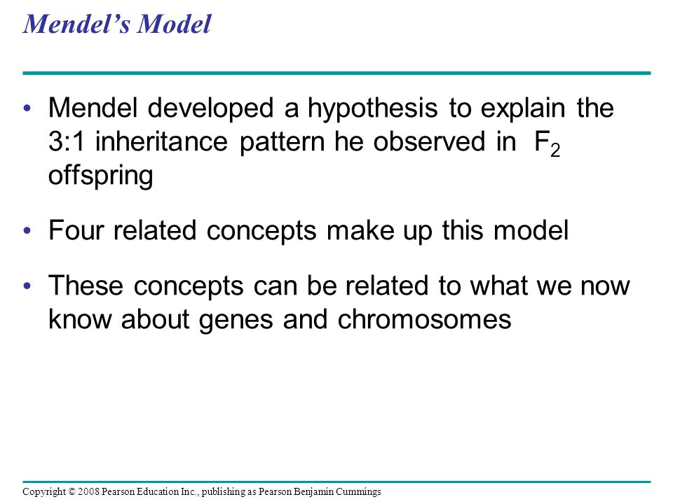 Four related concepts make up this model