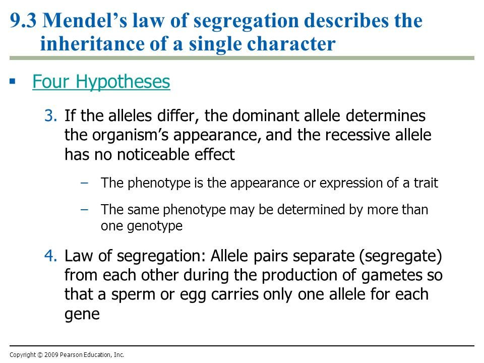 9.3 Mendel's law of segregation describes the inheritance of a single character