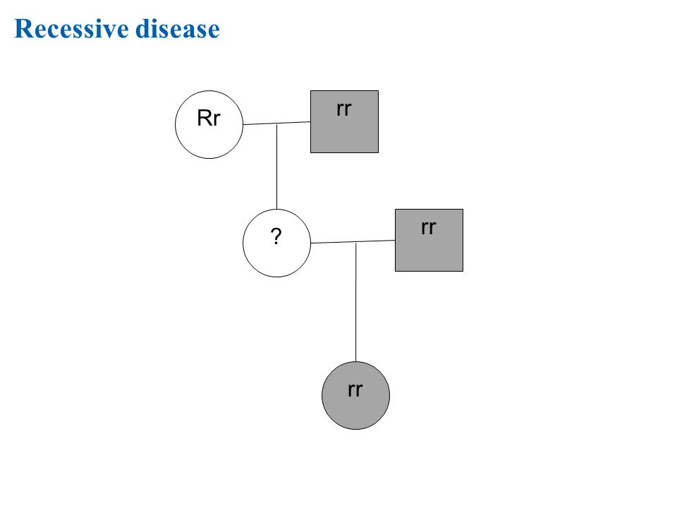 Recessive disease Rr rr rr rr