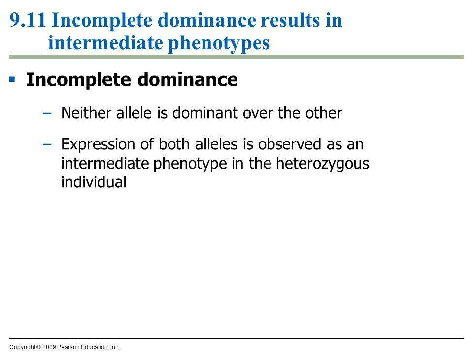 9.11 Incomplete dominance results in intermediate phenotypes