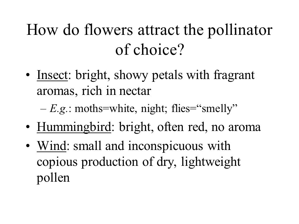 How do flowers attract the pollinator of choice