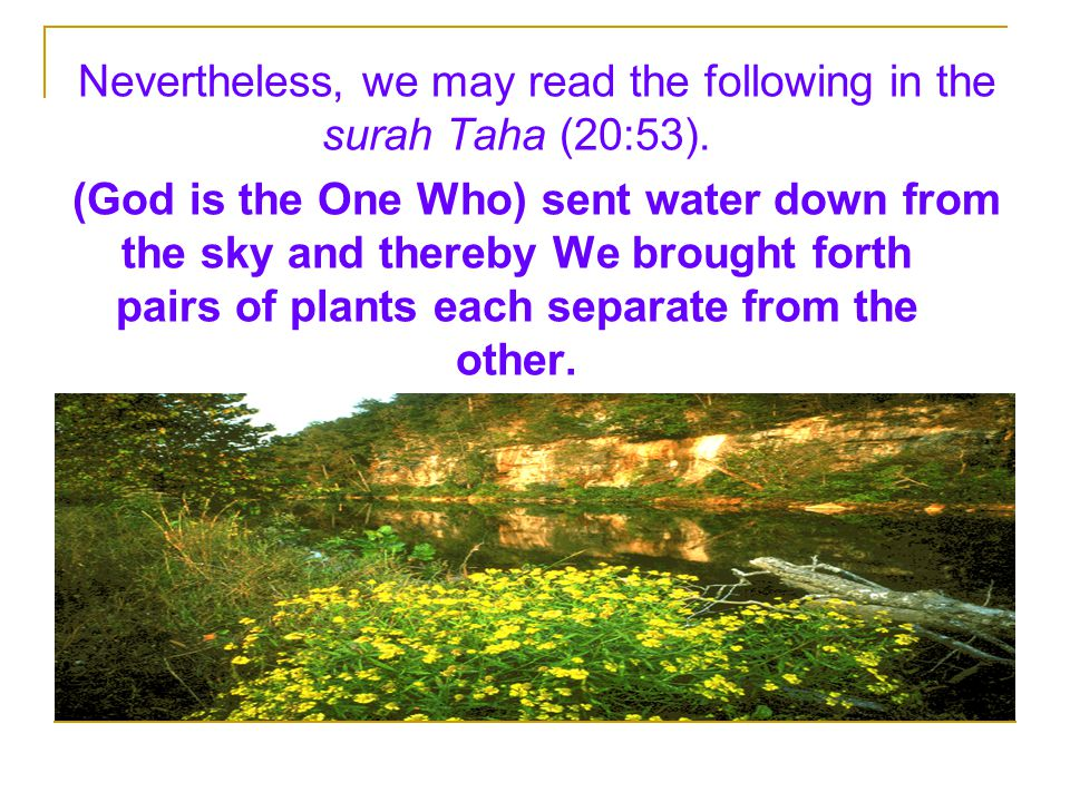 Nevertheless, we may read the following in the surah Taha (20:53).