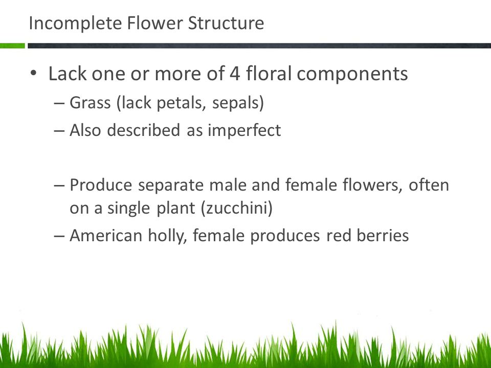 Incomplete Flower Structure