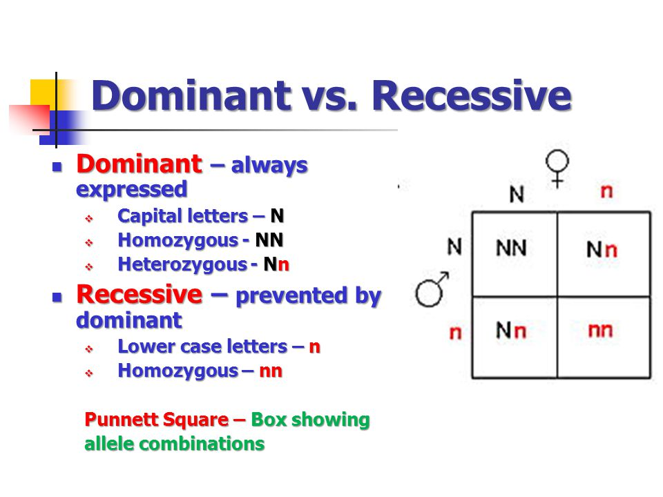 Dominant vs. Recessive Dominant – always expressed