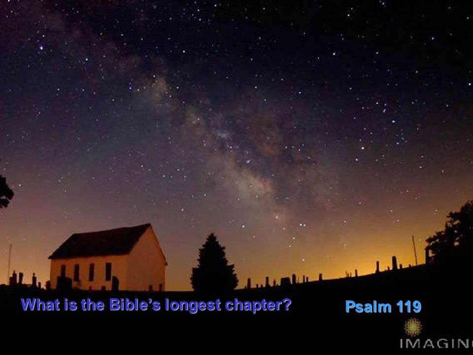 What is the Bible's longest chapter