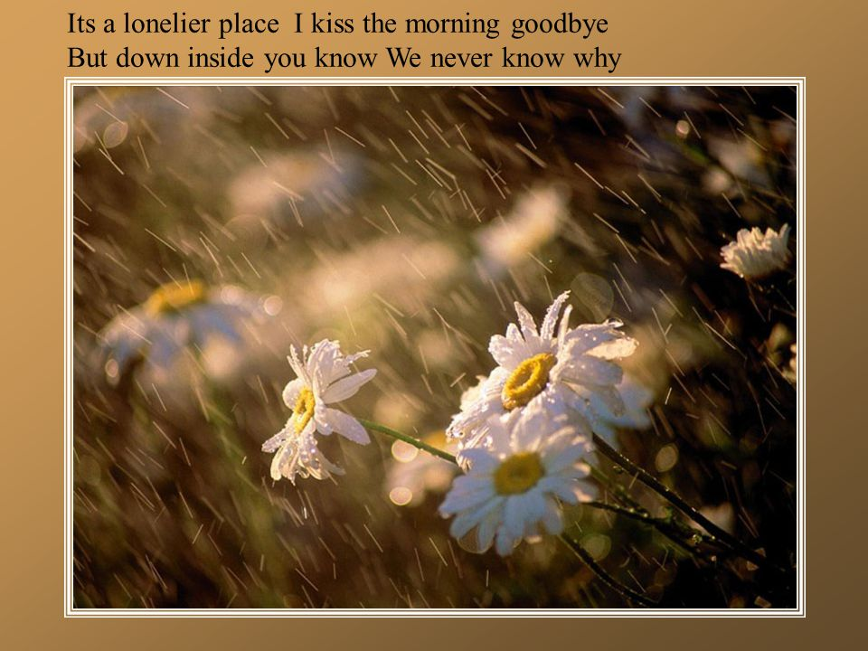 Its a lonelier place I kiss the morning goodbye But down inside you know We never know why