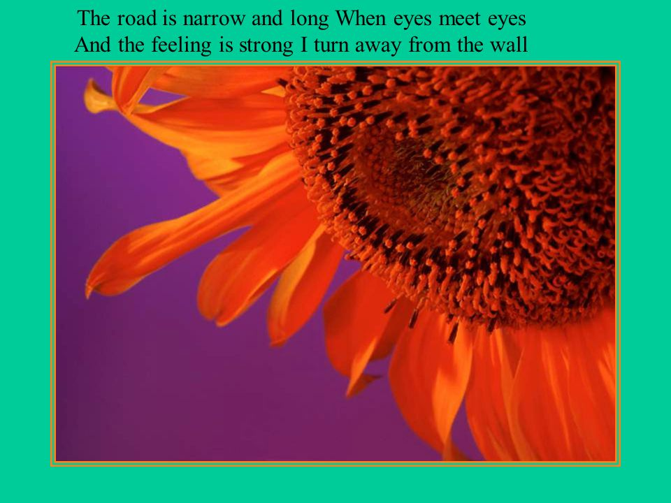 The road is narrow and long When eyes meet eyes