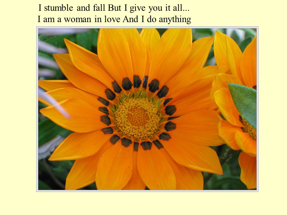 I stumble and fall But I give you it all...