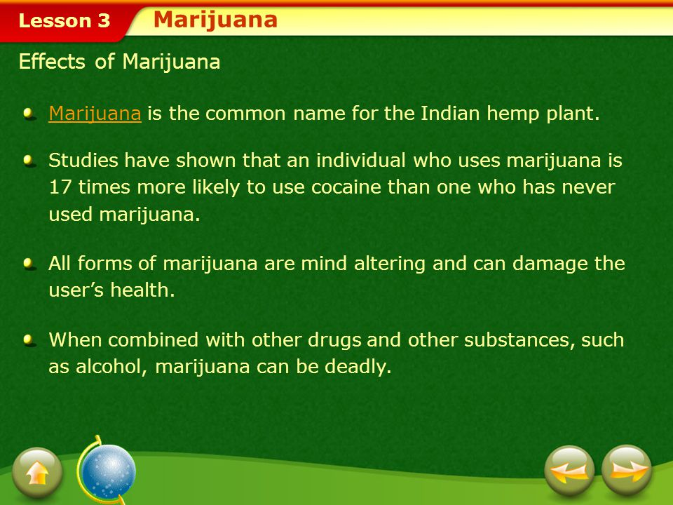 Marijuana Effects of Marijuana