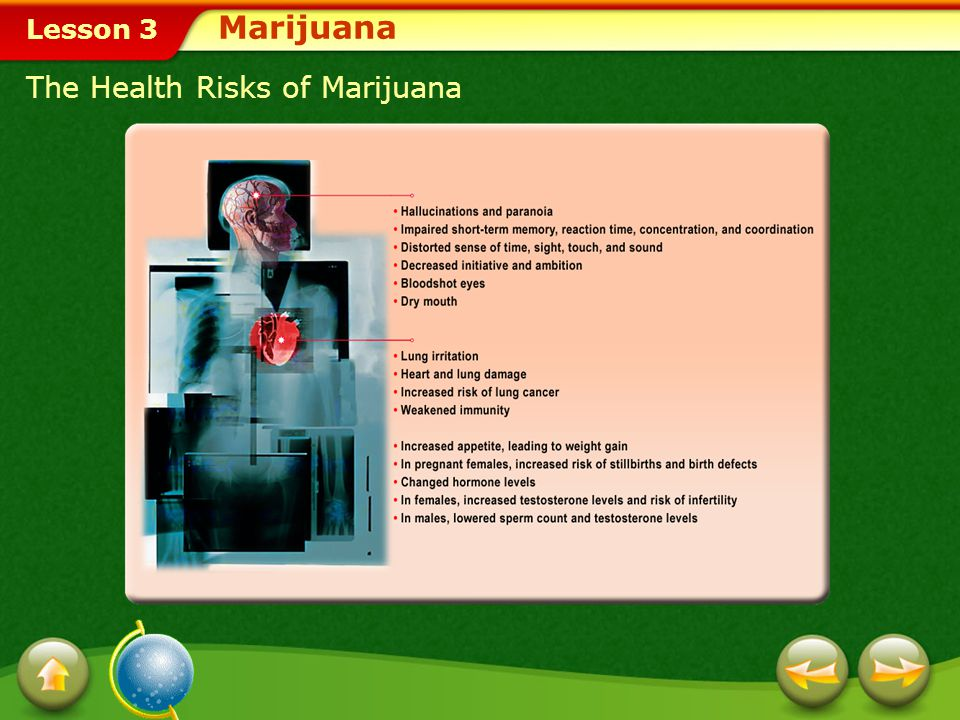 Marijuana The Health Risks of Marijuana