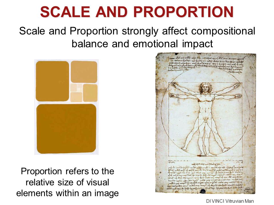 SCALE AND PROPORTION Scale and Proportion strongly affect compositional balance and emotional impact.