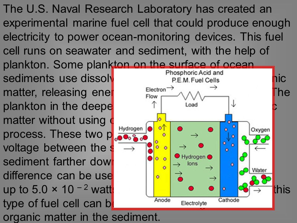 The U.S. Naval Research Laboratory has created an experimental marine fuel cell that could produce enough electricity to power ocean-monitoring devices. This fuel cell runs on seawater and sediment, with the help of plankton. Some plankton on the surface of ocean sediments use dissolved oxygen to break down organic matter, releasing energy; this is an aerobic process. The plankton in the deeper sediments break down organic matter without using oxygen; this is an anaerobic process. These two processes create a difference in voltage between the surface of the sediment and the sediment farther down in the seabed. The voltage difference can be used to produce electricity—
