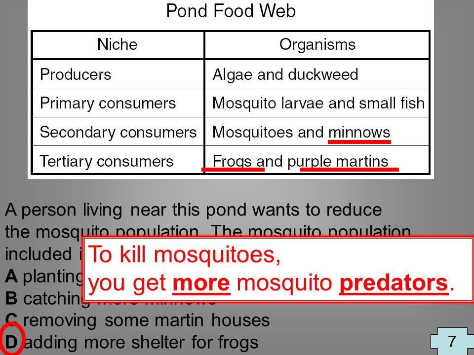 you get more mosquito predators.
