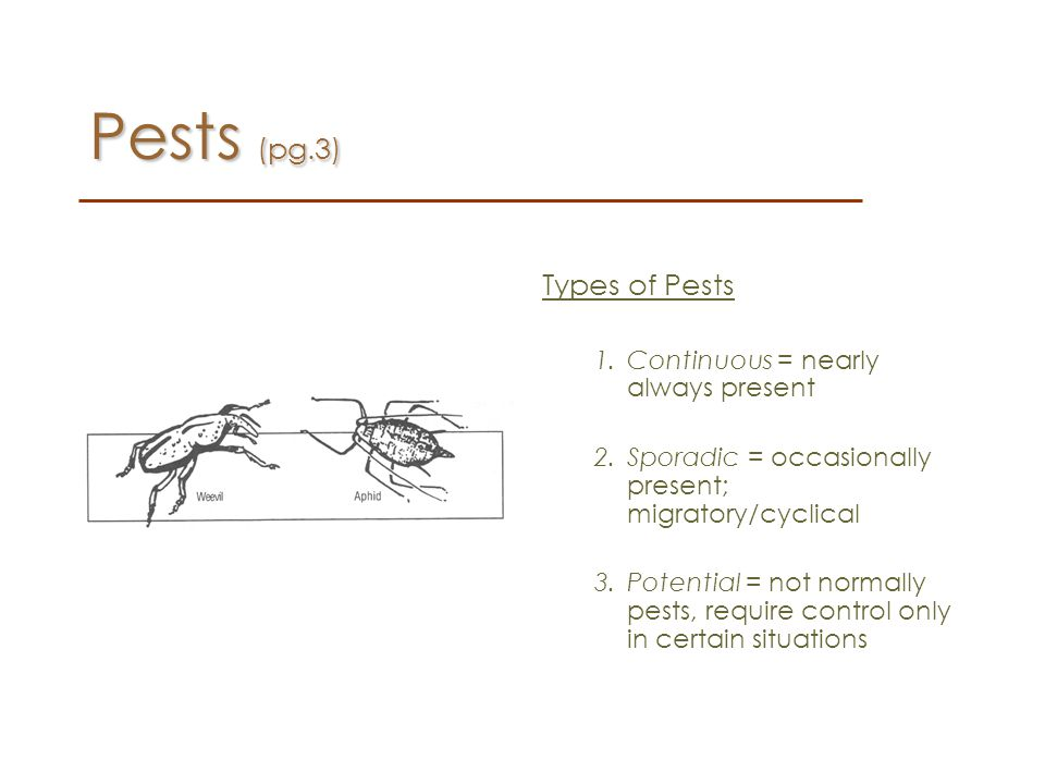 Pests (pg.3) Types of Pests Continuous = nearly always present