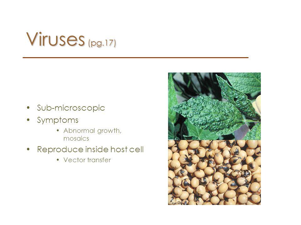 Viruses (pg.17) Sub-microscopic Symptoms Reproduce inside host cell