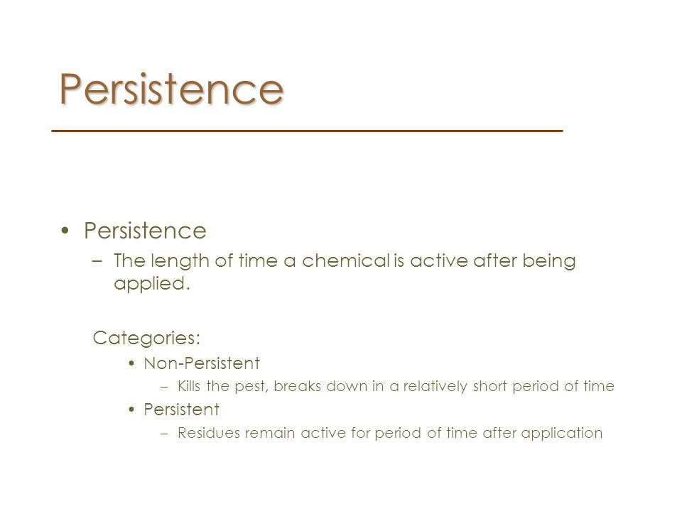 Persistence Persistence