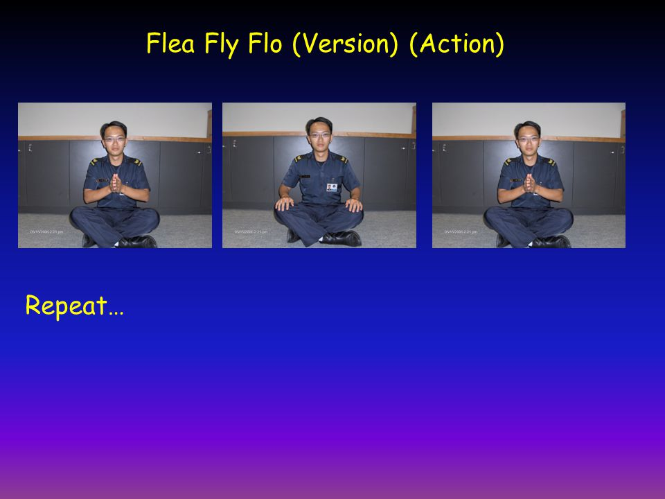 Flea Fly Flo (Version) (Action)