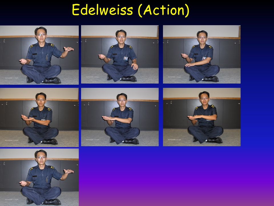 Edelweiss (Action)