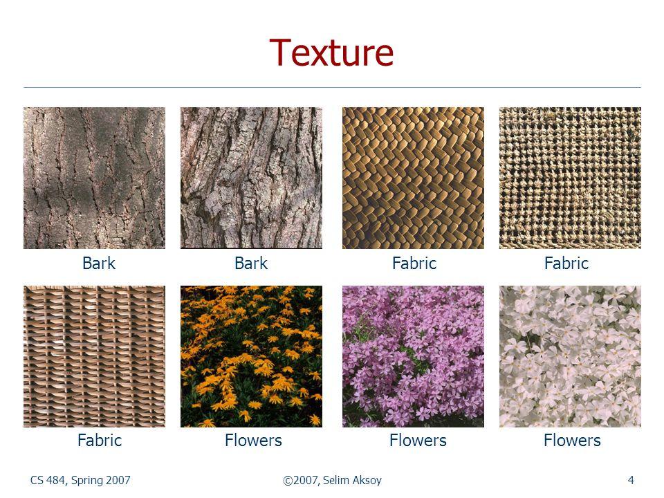 Texture Bark Bark Fabric Fabric Fabric Flowers Flowers Flowers