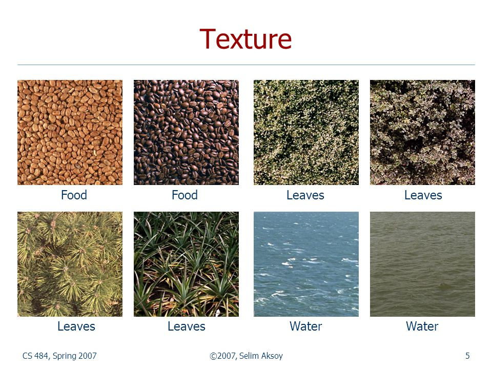 Texture Food Food Leaves Leaves Leaves Leaves Water Water
