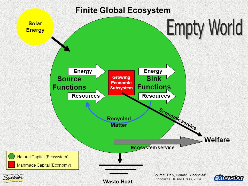 Finite Global Ecosystem Growing Economic Subsystem
