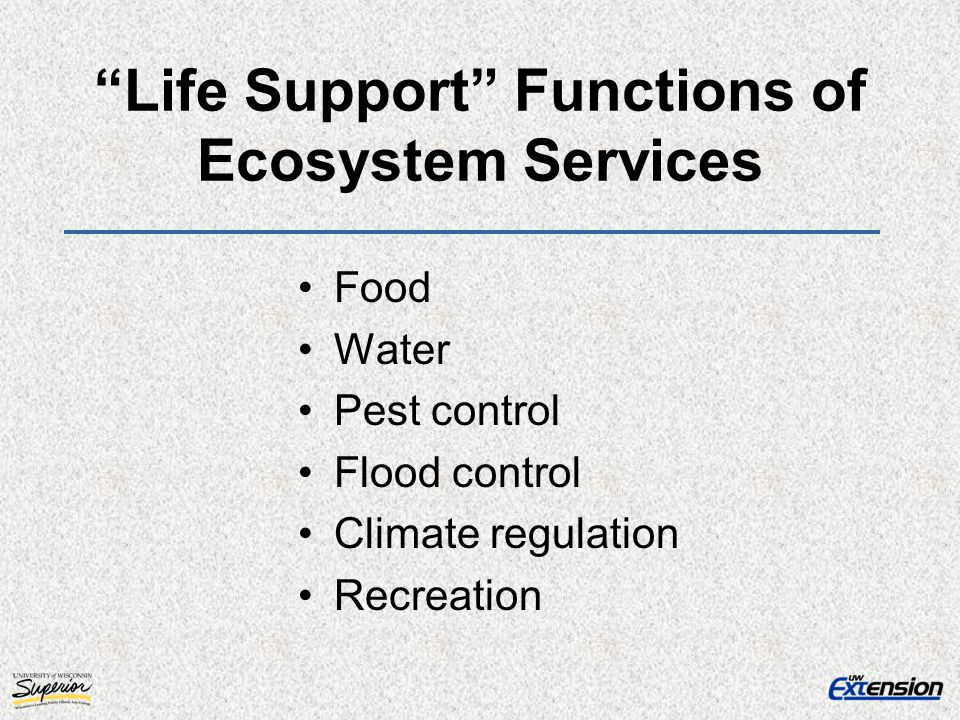 Life Support Functions of Ecosystem Services