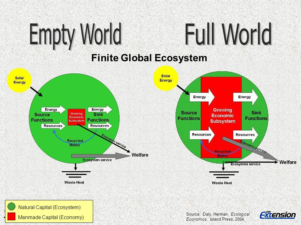 Finite Global Ecosystem