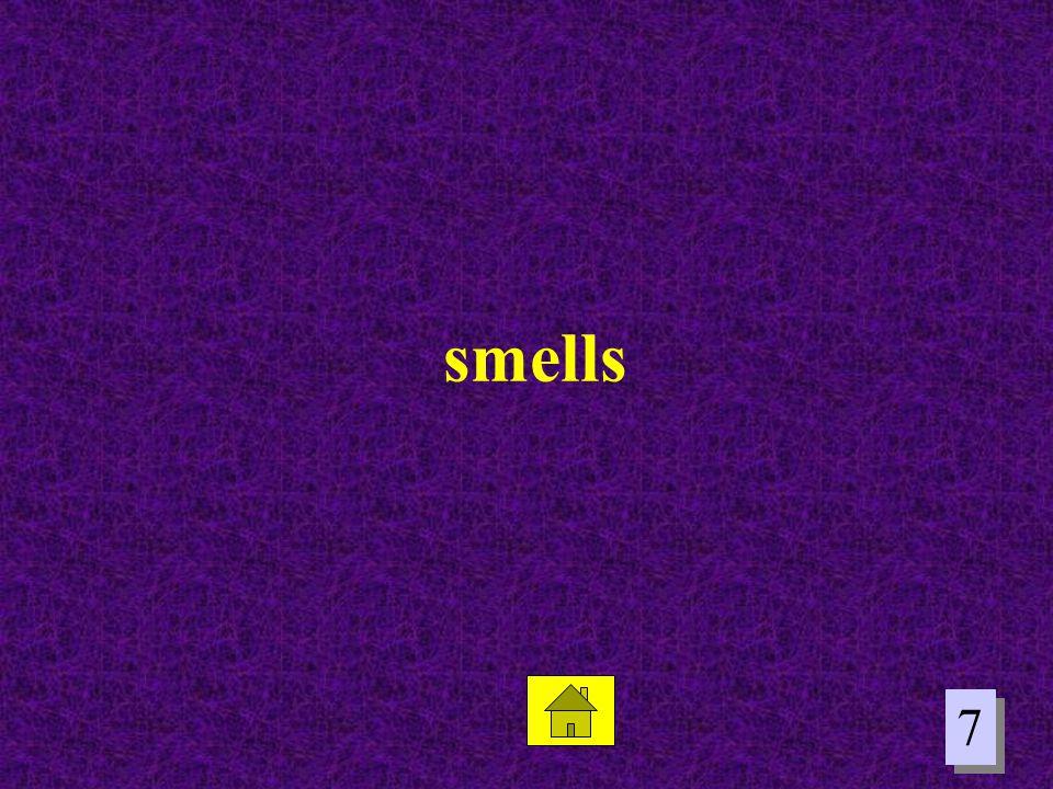 smells 7