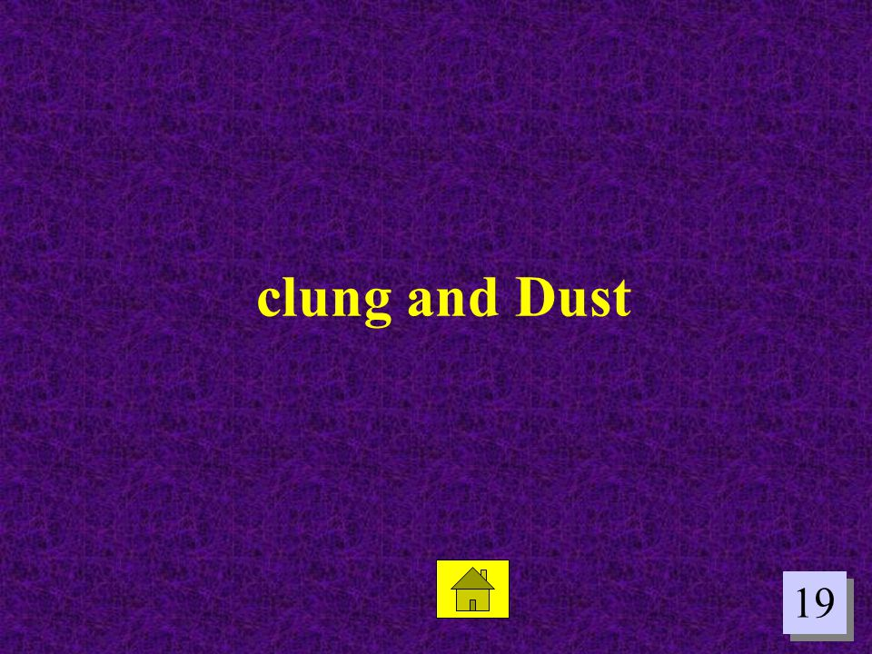 clung and Dust 19