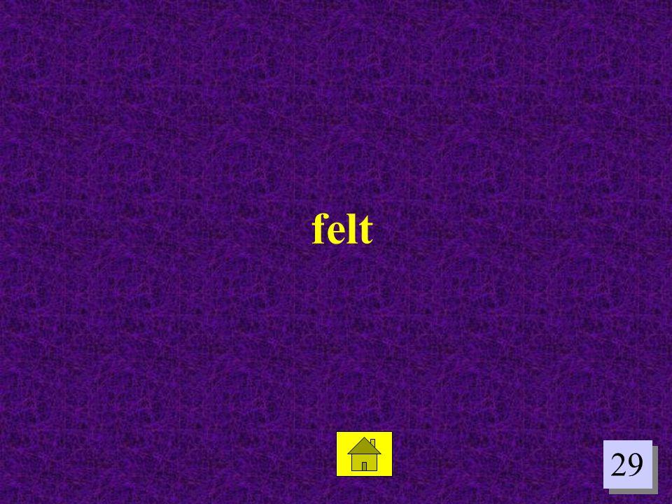 felt 29
