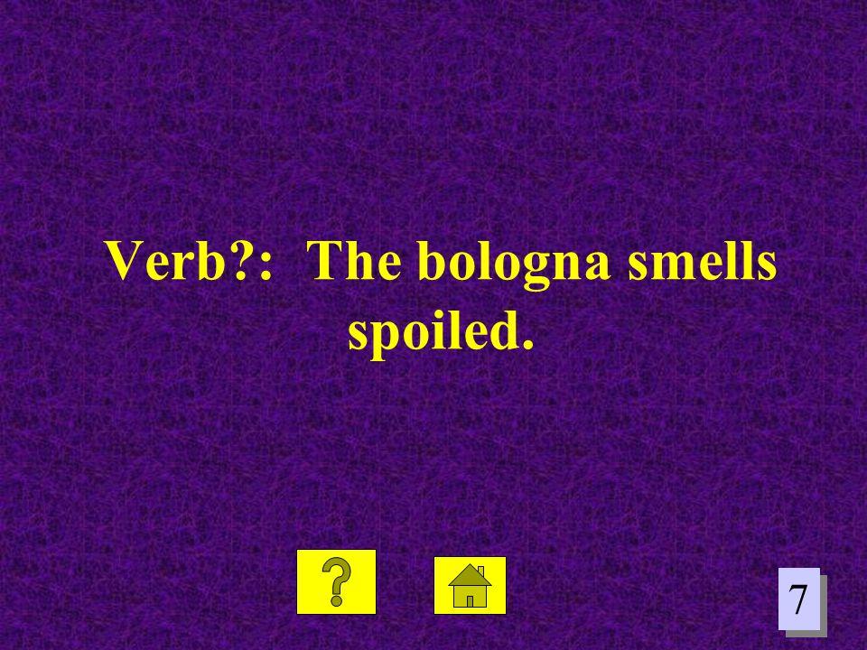 Verb : The bologna smells spoiled.