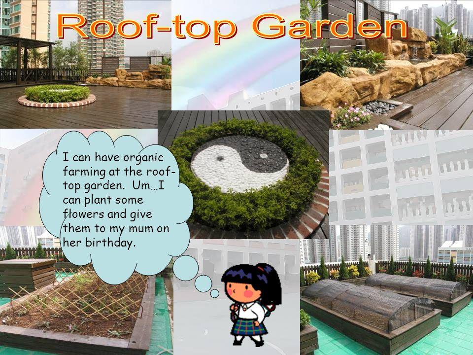 Roof-top Garden I can have organic farming at the roof-top garden. Um…I can plant some flowers and give them to my mum on her birthday.