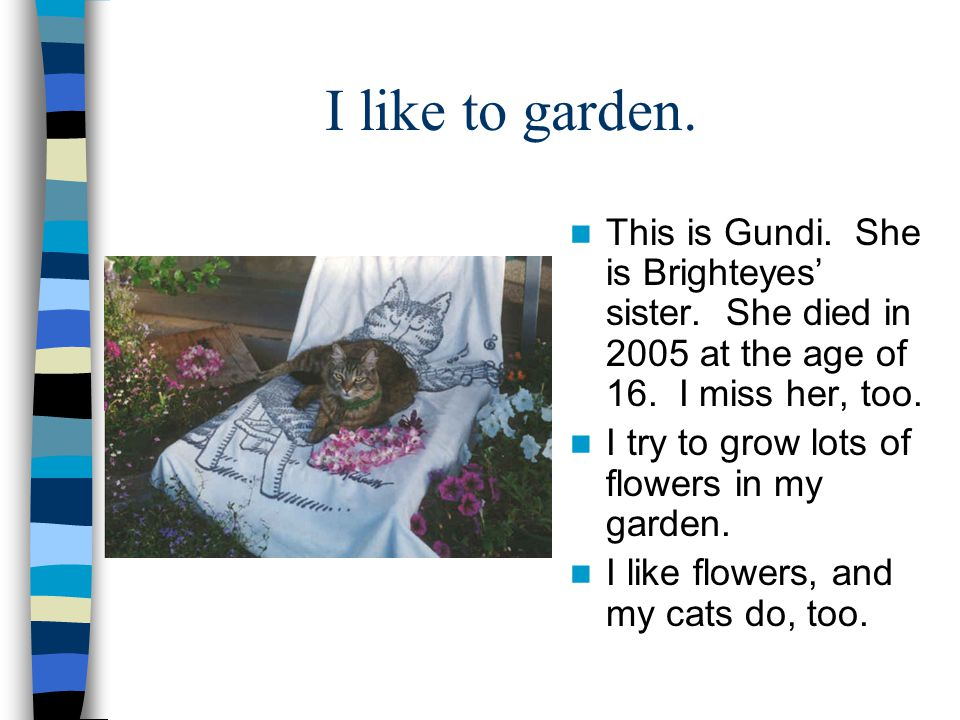 I like to garden. This is Gundi. She is Brighteyes' sister. She died in 2005 at the age of 16. I miss her, too.