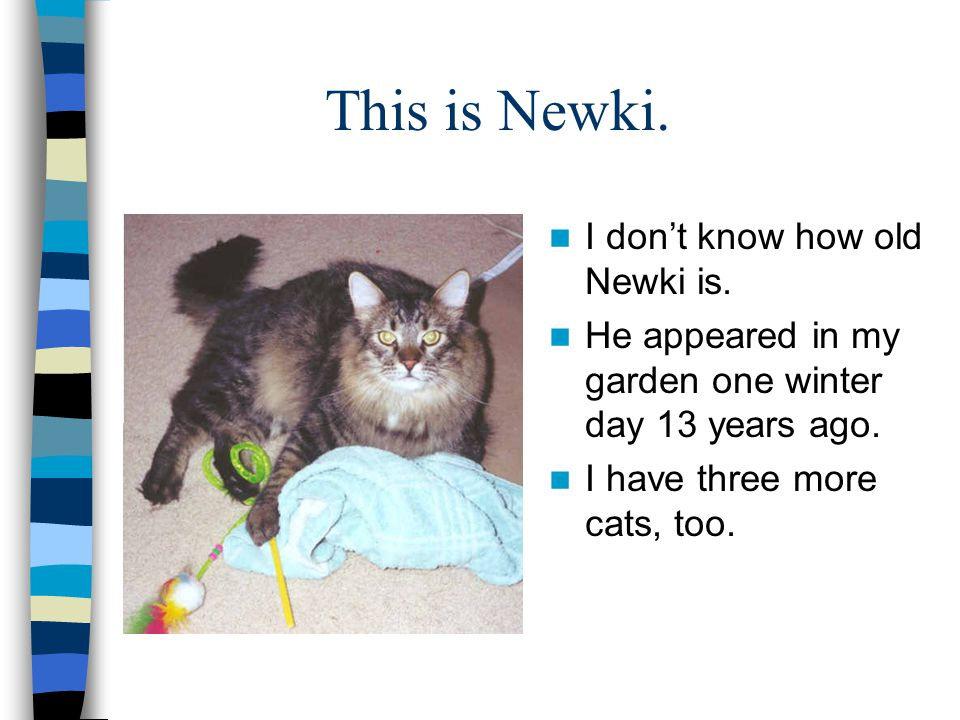 This is Newki. I don't know how old Newki is.
