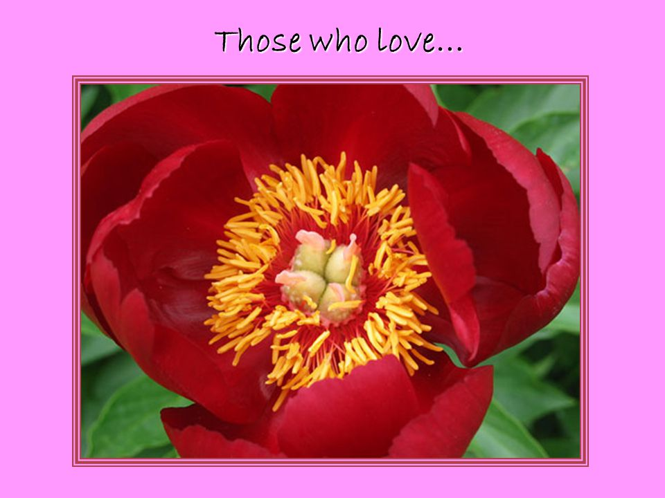 Those who love…