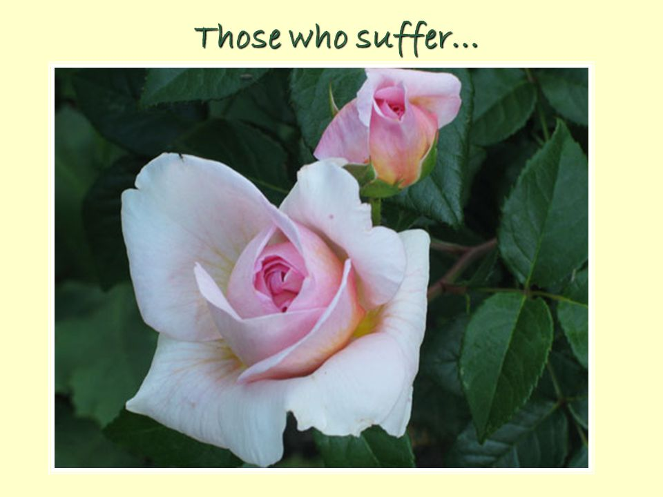 Those who suffer…