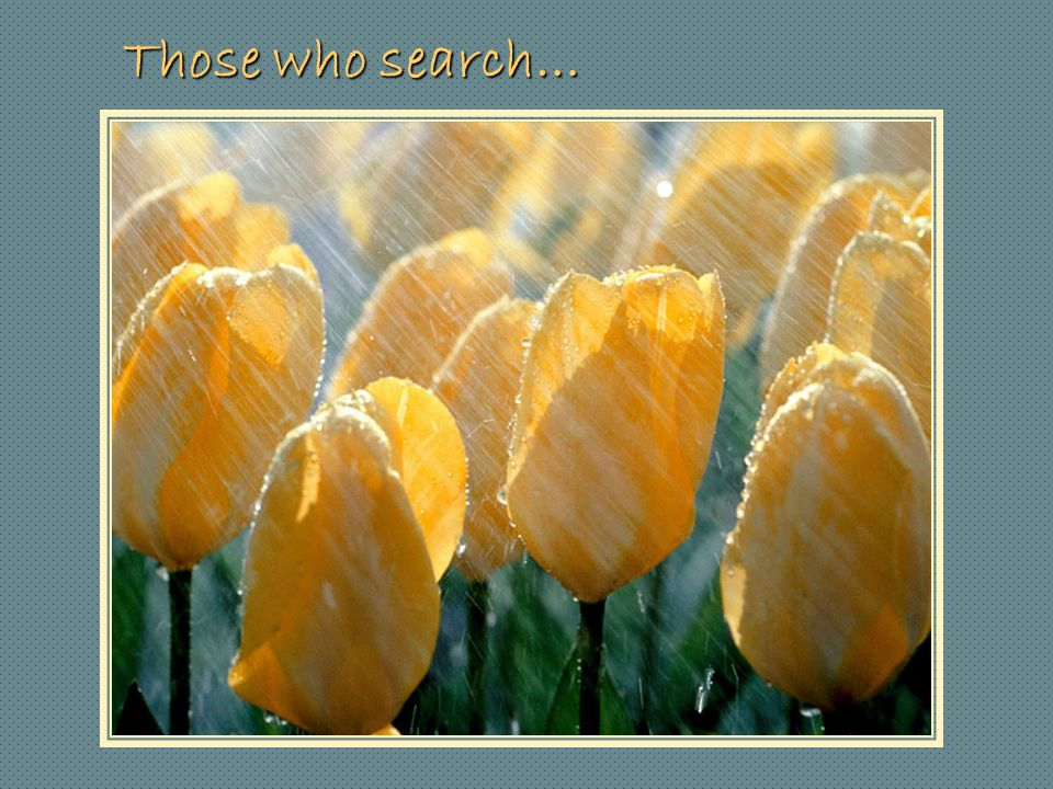 Those who search…