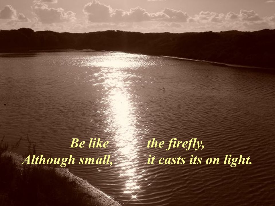 Be like the firefly, Although small, it casts its on light.