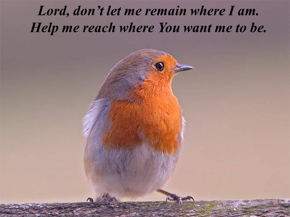 Lord, don't let me remain where I am.
