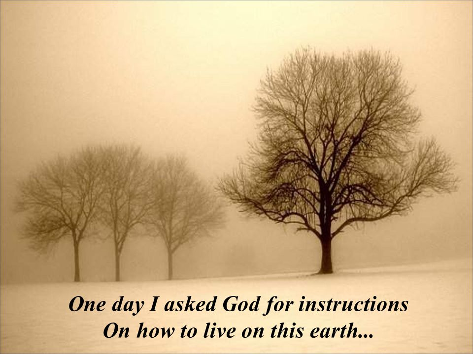 One day I asked God for instructions