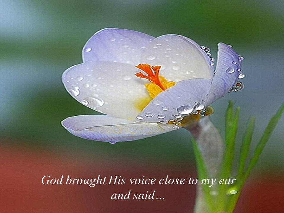 God brought His voice close to my ear