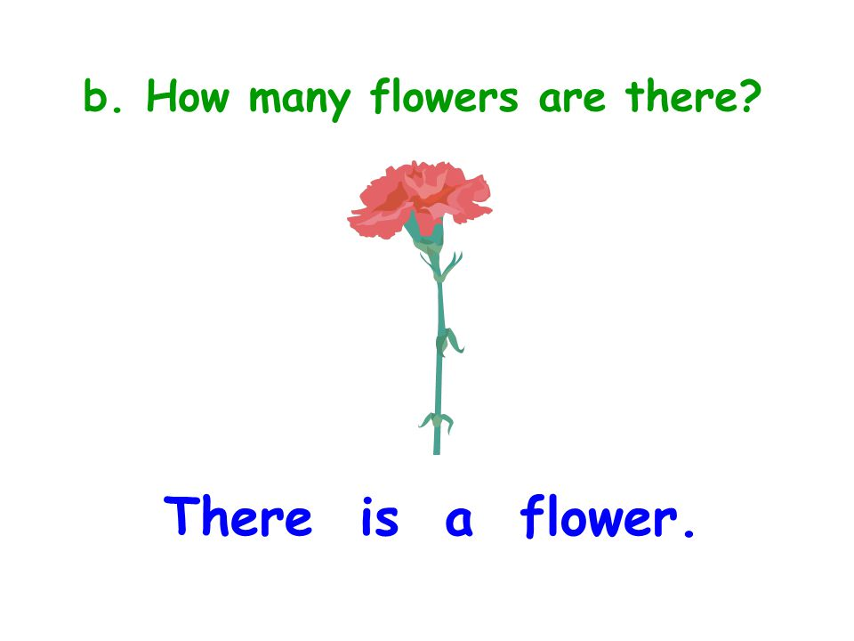b. How many flowers are there