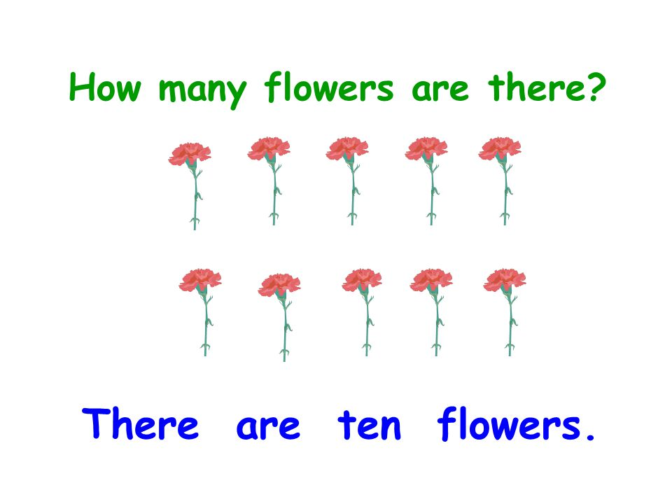 How many flowers are there