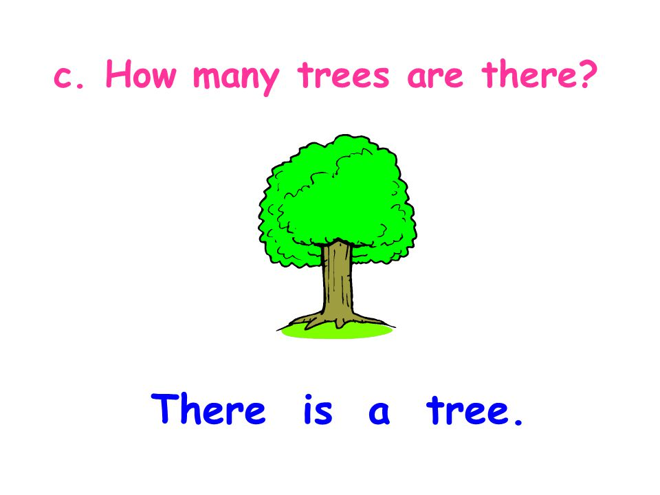 c. How many trees are there