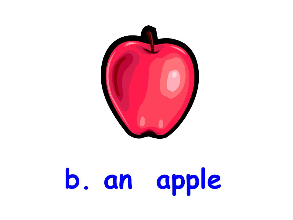 b. an apple