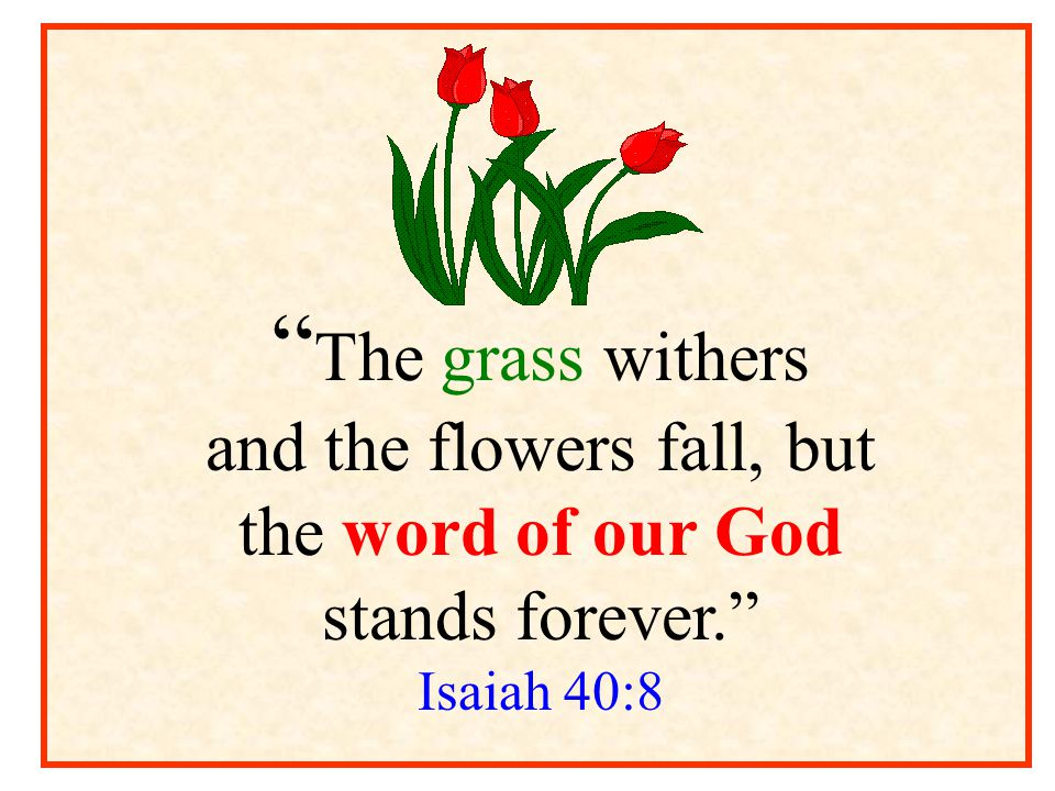and the flowers fall, but the word of our God