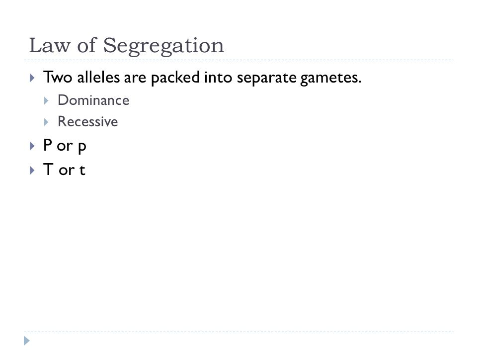 Law of Segregation Two alleles are packed into separate gametes.